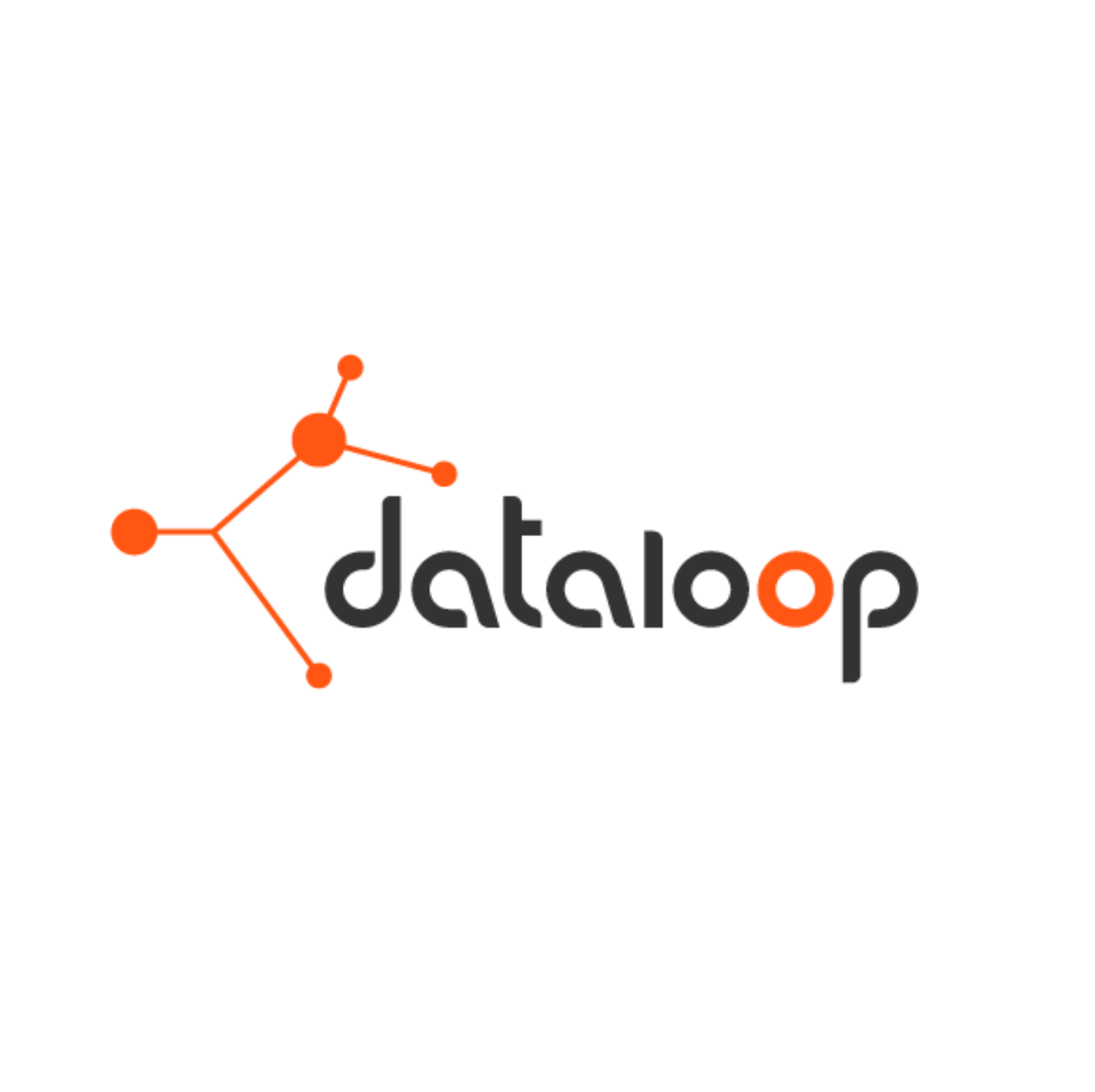 dataloop - Data management platform for AI