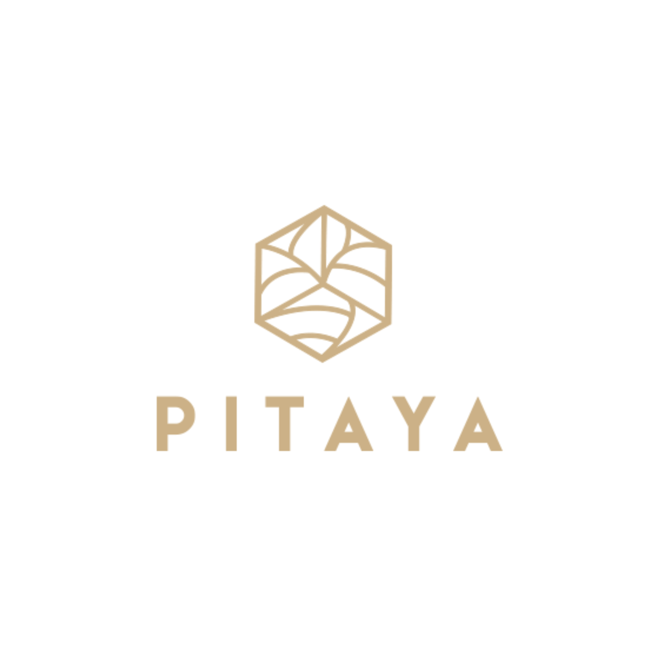 Pitaya - Booking platform for team-building experiences