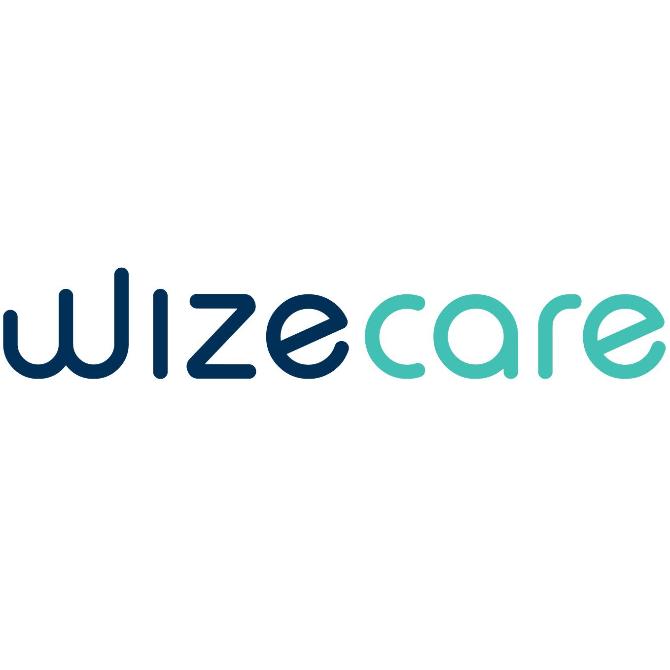 wizecare - iconyc portfolio